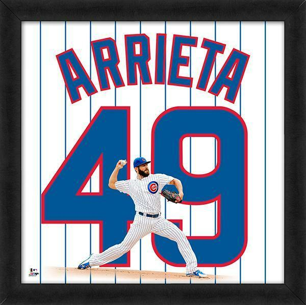 Jake Arrieta Chicago Cubs 2016 World Series framed jersey #49 photo 20×20
